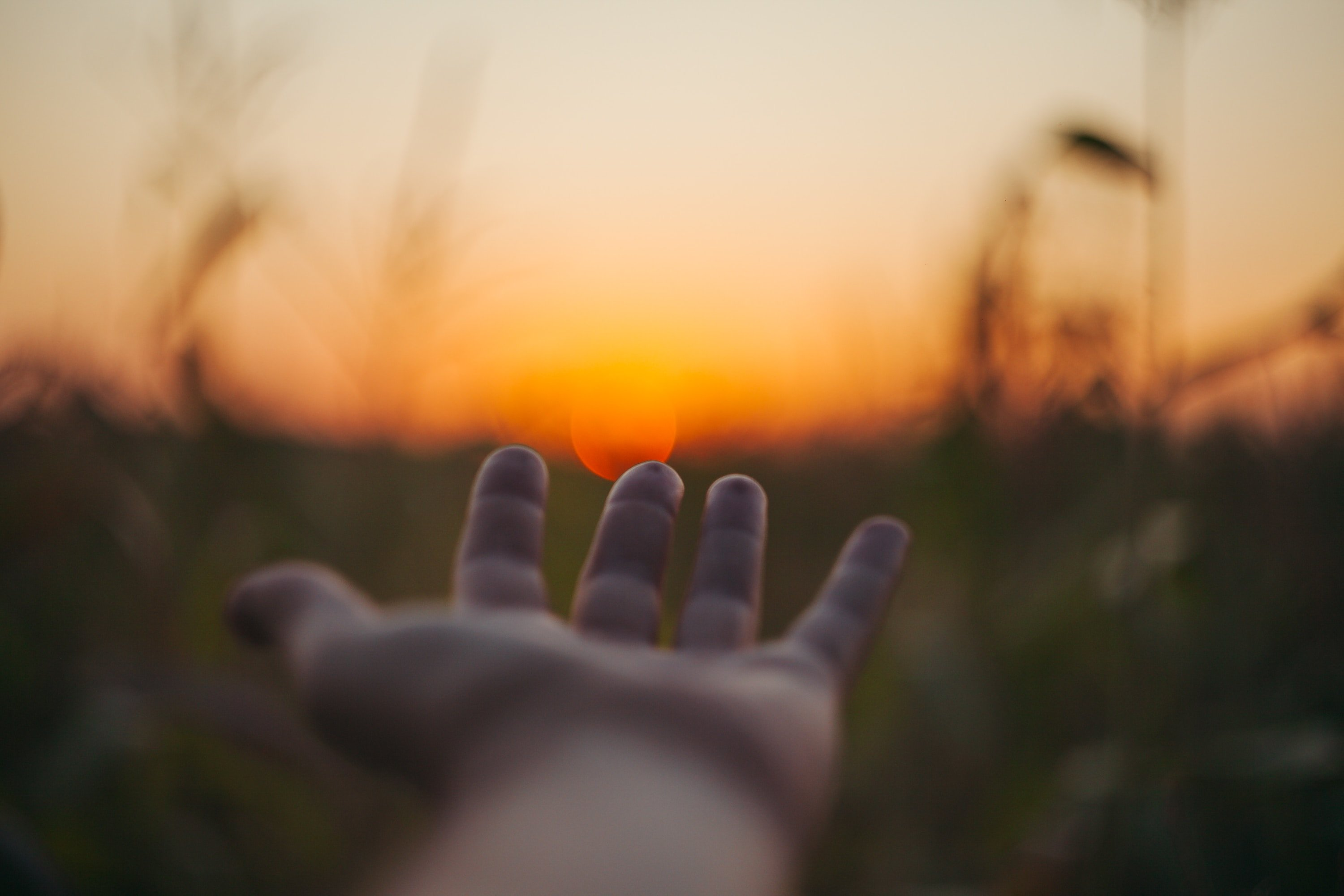 Upraised hand, sunset in background